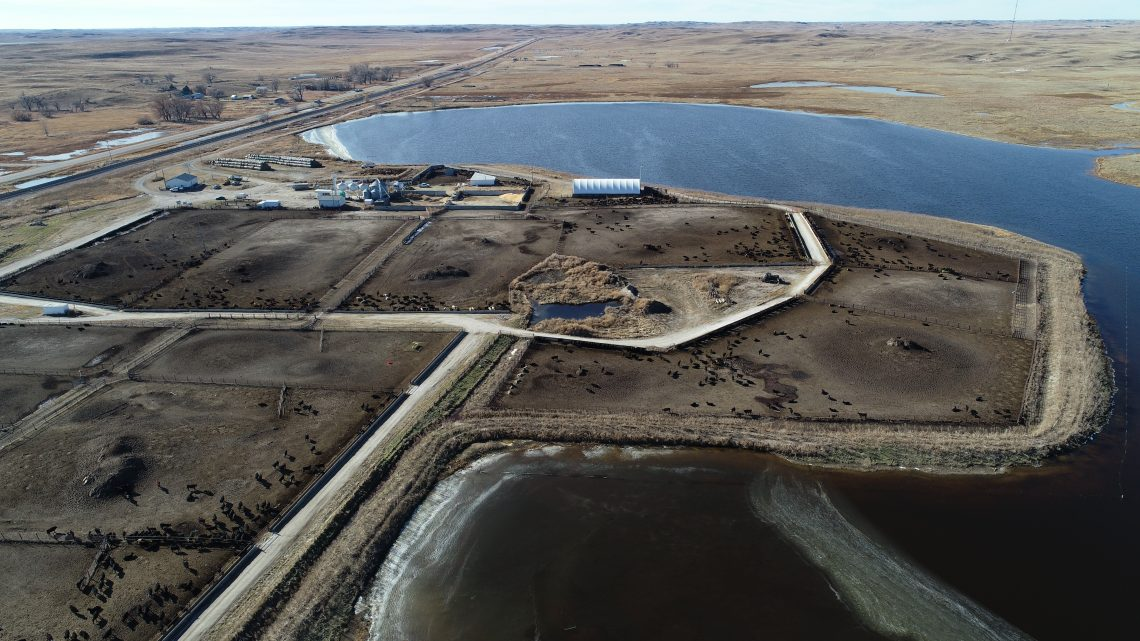 Aerial Picture of Feedlot